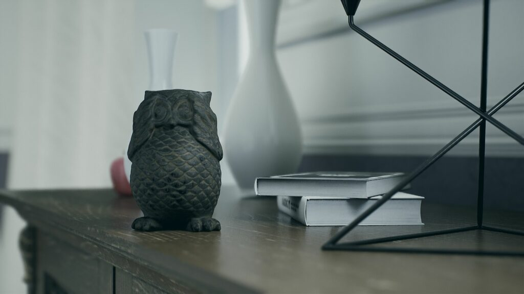 Owl Toy - Virtual Picture